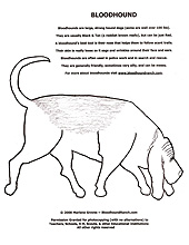 Bloodhound Ranch Bloodhound Education Fun Lessons Bloodhound Coloring Pages